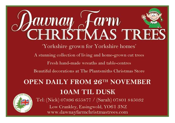 Dawnay Farm Christmas Tree advert